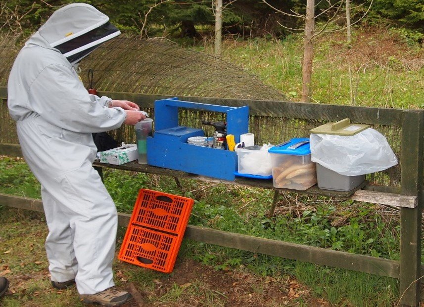 Simple Apiary Hygiene for Hobby Beekeepers